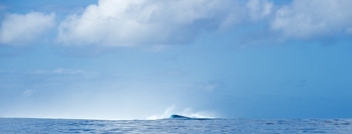 Faherty Supports the Surfrider Foundation for Clean Water and Healthy Beaches