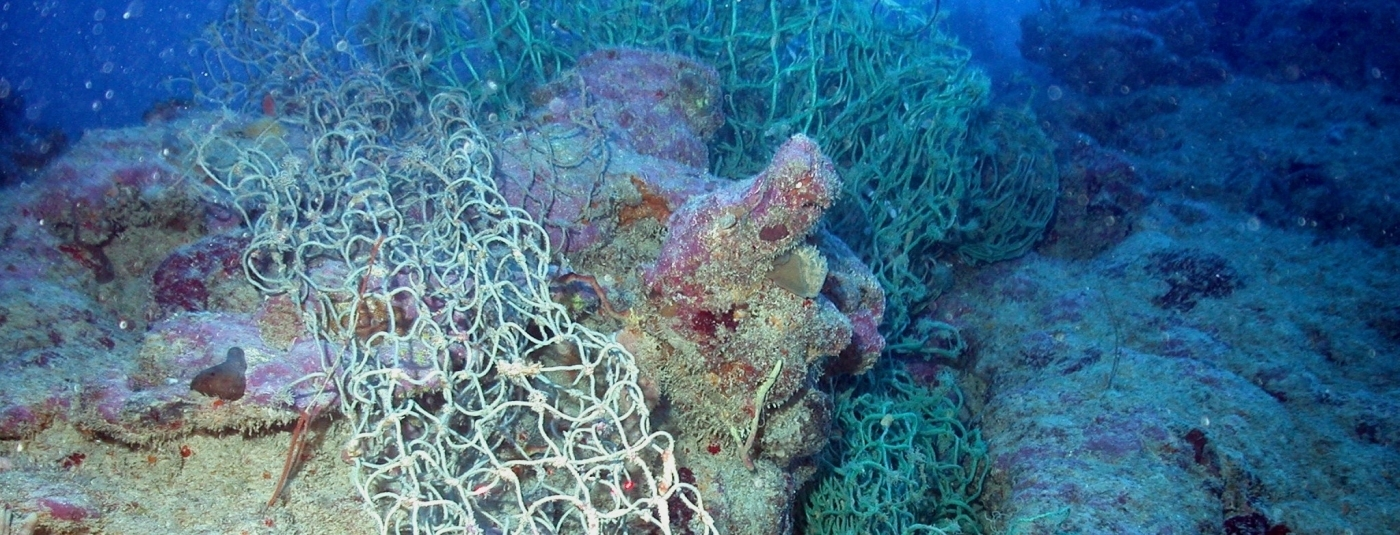 The Harms of Derelict Fishing Gear