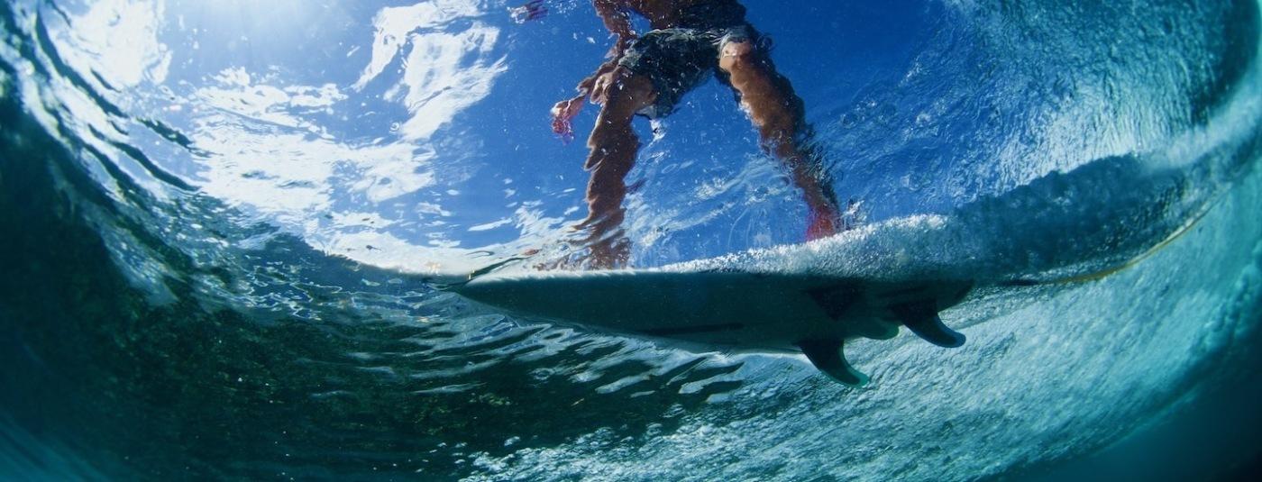 Introducing the 2021 Surf Industry Coastal Defenders