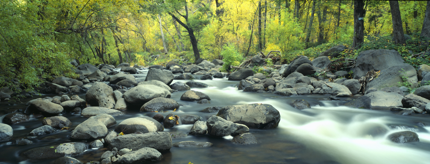 How Six Tribes Reinstated Protections for Millions of U.S. Streams and Wetlands