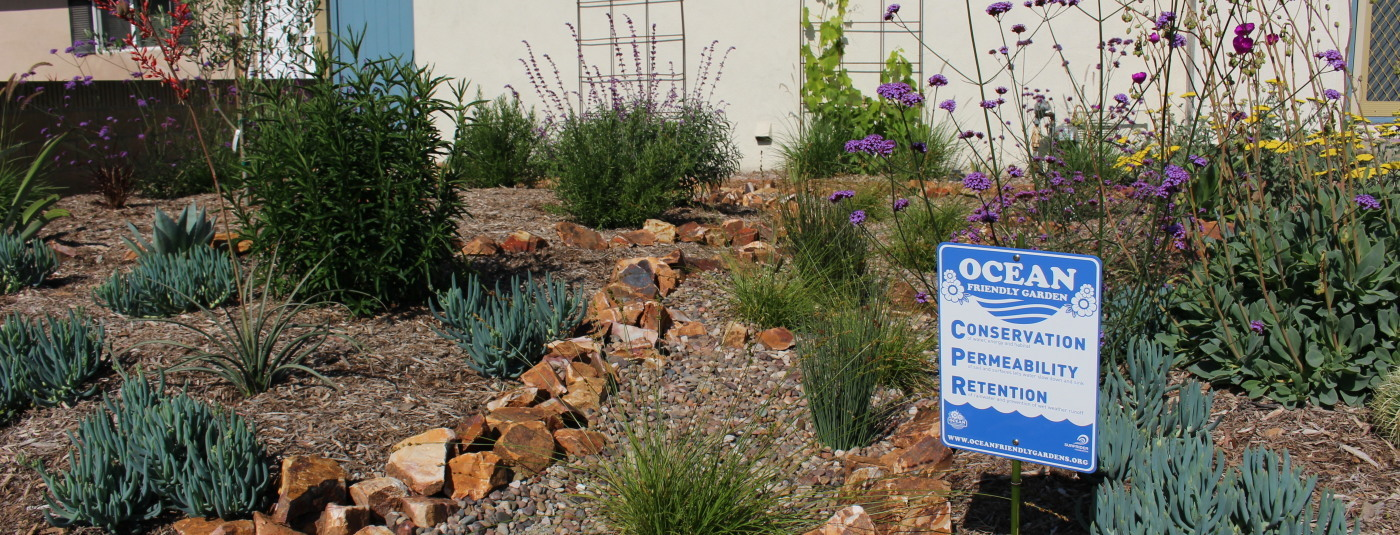 Transforming Neighborhoods with Ocean Friendly Gardens in Long Beach, California