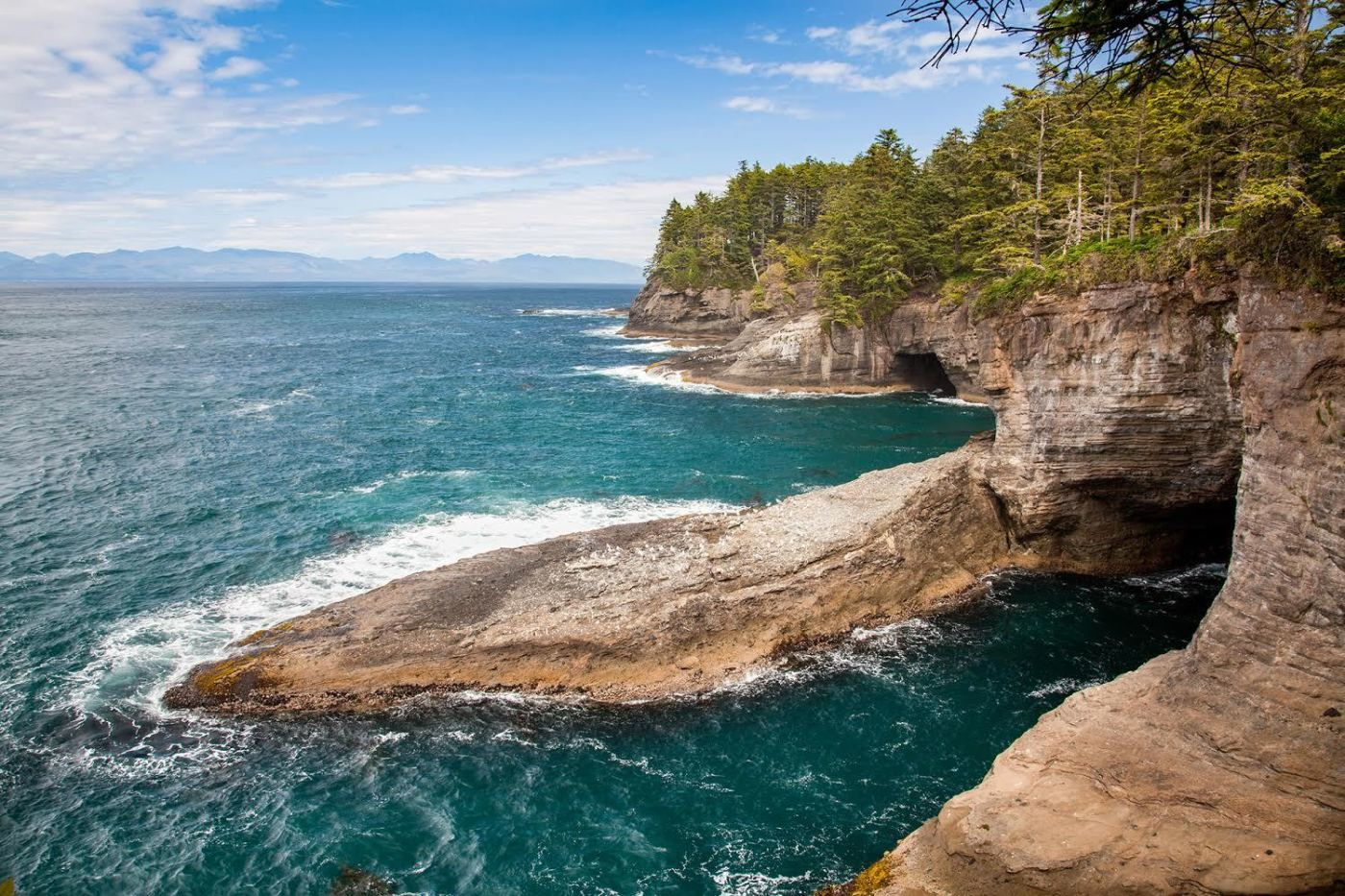 Victory: Washington State Passes Law to Prohibit Seabed Mining