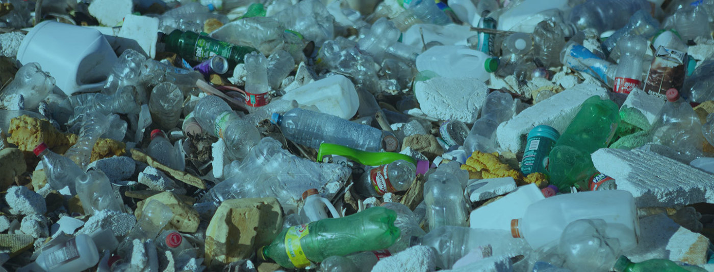 Victory: Washington State Passes Comprehensive Policy to tackle Plastic Pollution