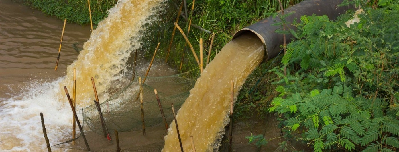 How do combined sewer overages (CSOs) pollute coastal watersheds?