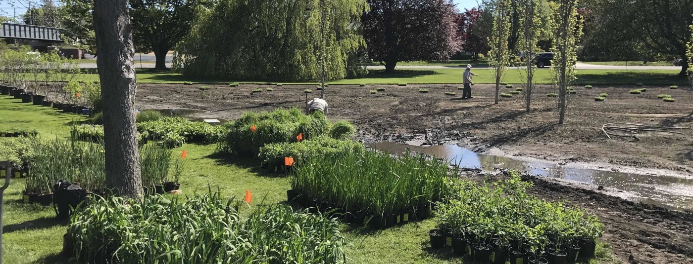 Ocean Friendly Gardens are Springing up Across Long Island