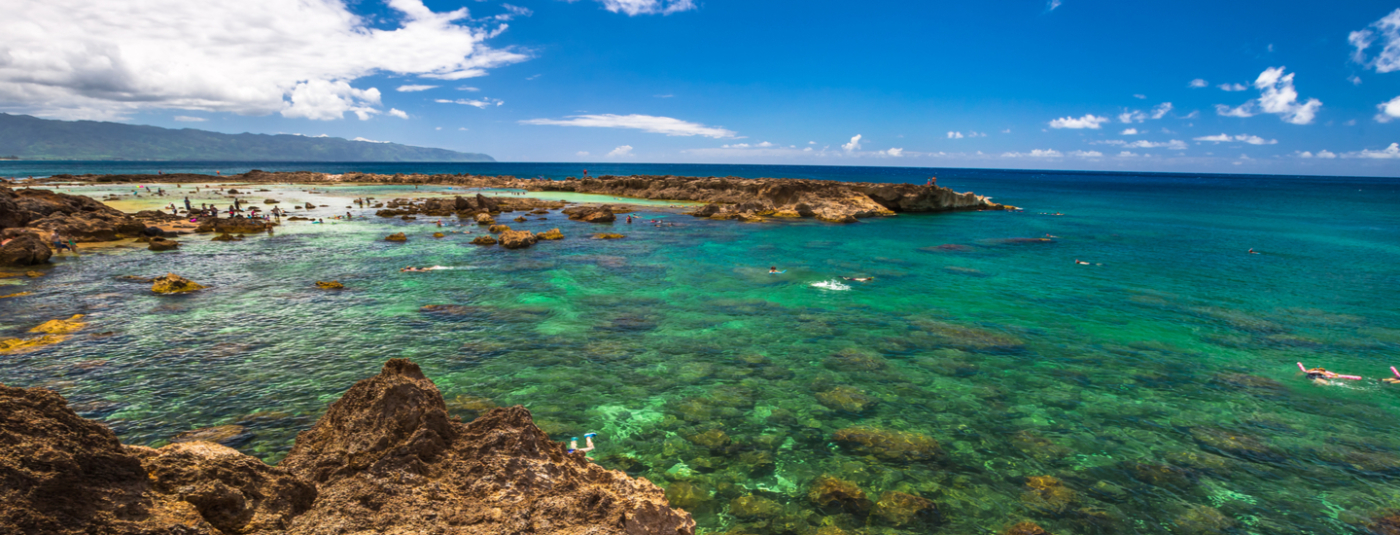 Litigation Leads to Protections for Sharks Cove on Oahu