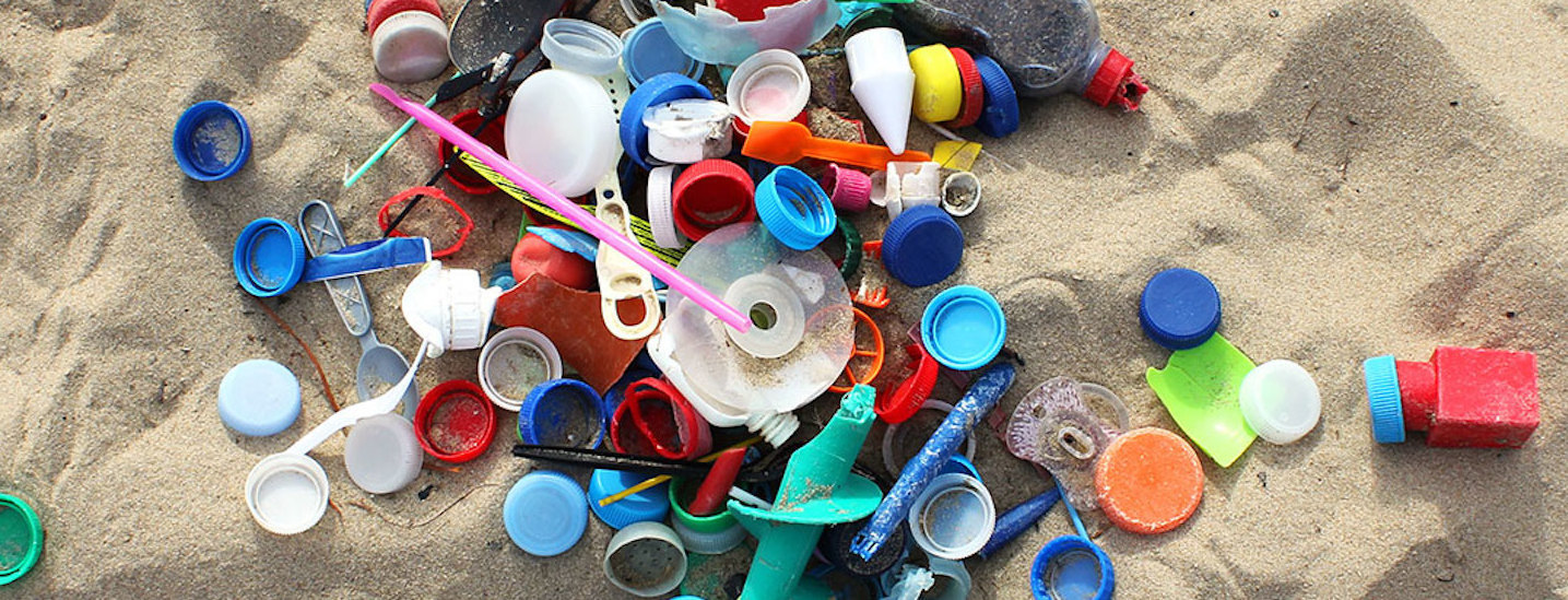 California Initiative to Fight Plastic Pollution Qualifies for Ballot!