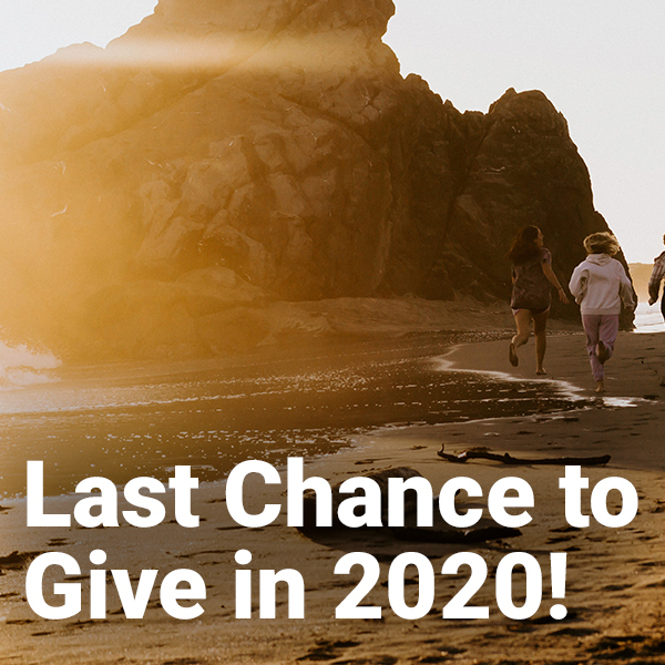Last Chance to Give in 2020
